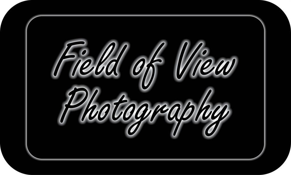 FOV-Studio-Logo.jpg
